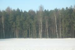 Ferie zimowe - Grybów-Kamianna 2010